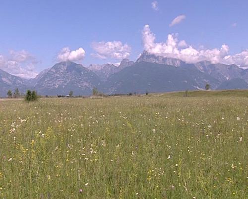Fermo immagine dal documentario sui magredi girato dalle Produzioni televisive dell'Ufficio Stampa e Comunicazione della Regione Friuli Venezia Giulia - Trieste 11/04/2014