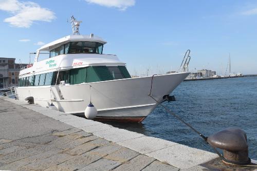 Il Delfino Verde, l'imbarcazione che nei mesi di luglio e agosto del prossimo anno effettuerà il tour marittimo storico nel Golfo di Trieste.
