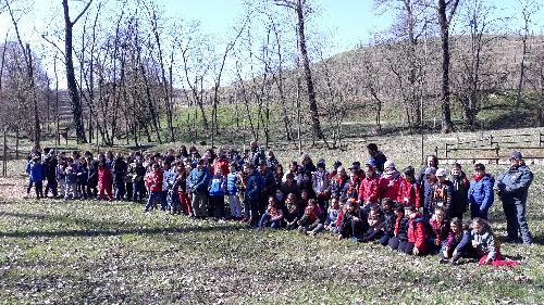 Gli alunni partecipanti alla Giornata internazionale delle Foreste a Bosco Romagno (Cividale)