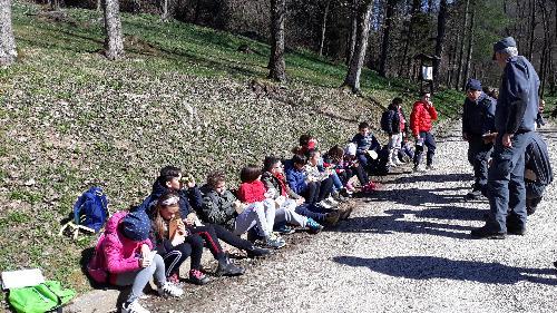 Ispettori del Cfr danno lezione nel bosco agli alunni delle scuole primarie di Udine e Cividale