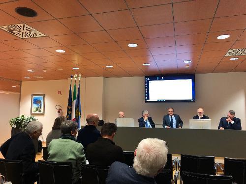 L'intervento del vicegovernatore, Riccardo Riccardi, all'incontro del Garante della salute, a Udine