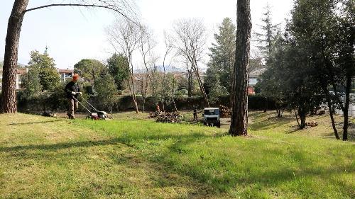 Operai forestali regionali al lavoro nel Parco di Villa Coronini Cronberg a Gorizia